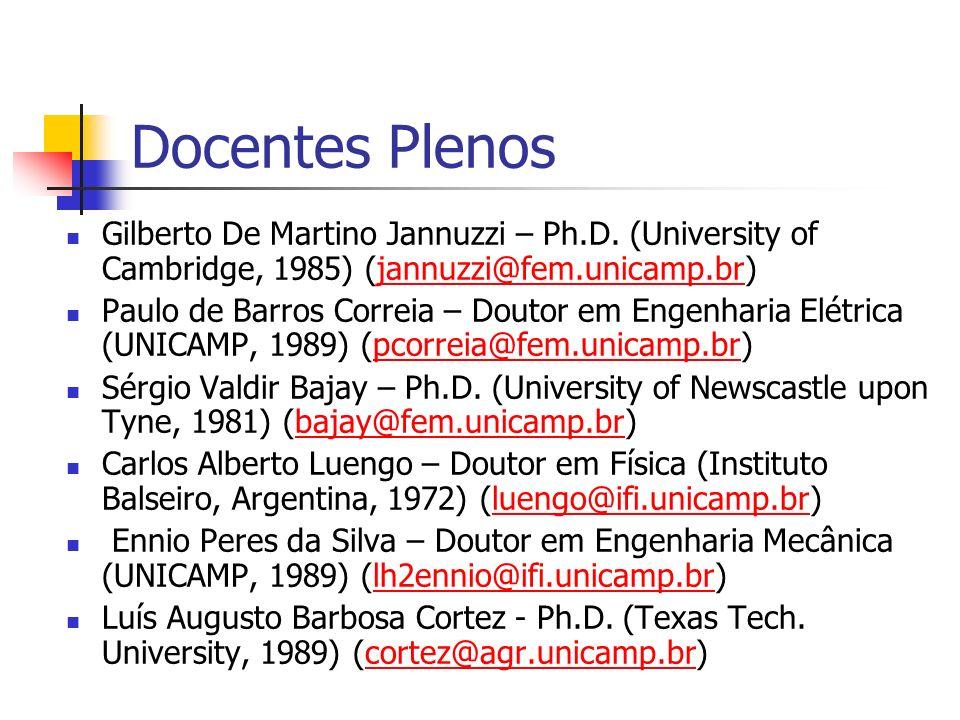 Docentes Plenos Gilberto De Martino Jannuzzi – Ph.D. (University of Cambridge, 1985) (jannuzzi@fem.unicamp.br)jannuzzi@fem.unicamp.br Paulo de Barros