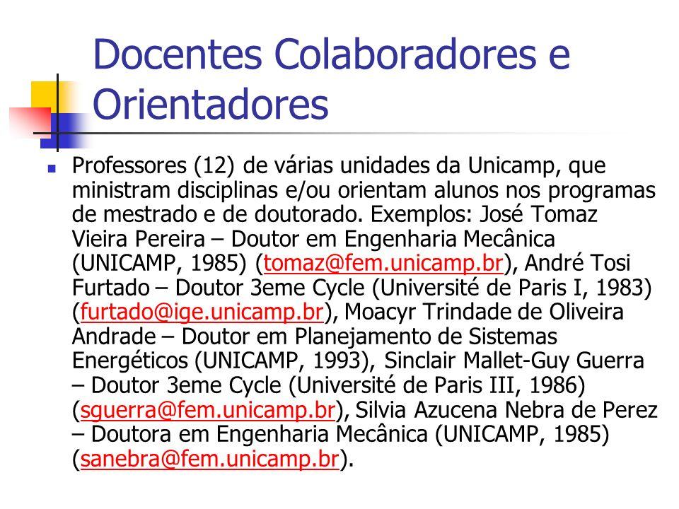 Docentes Colaboradores e Orientadores Professores (12) de várias unidades da Unicamp, que ministram disciplinas e/ou orientam alunos nos programas de