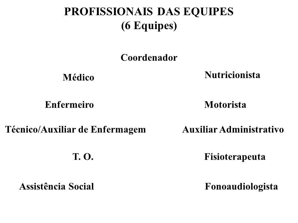 PROFISSIONAIS DAS EQUIPES (6 Equipes) Médico Enfermeiro Técnico/Auxiliar de Enfermagem T. O.Fisioterapeuta Assistência SocialFonoaudiologista Nutricio