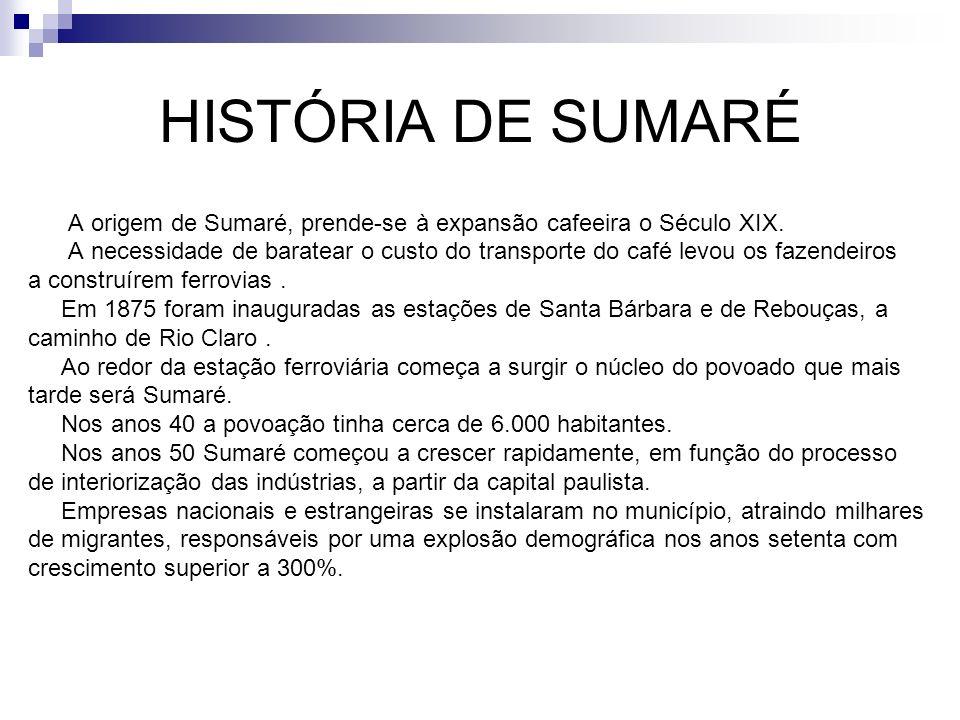 HISTÓRIA DE SUMARÉ A origem de Sumaré, prende-se à expansão cafeeira o Século XIX. A necessidade de baratear o custo do transporte do café levou os fa