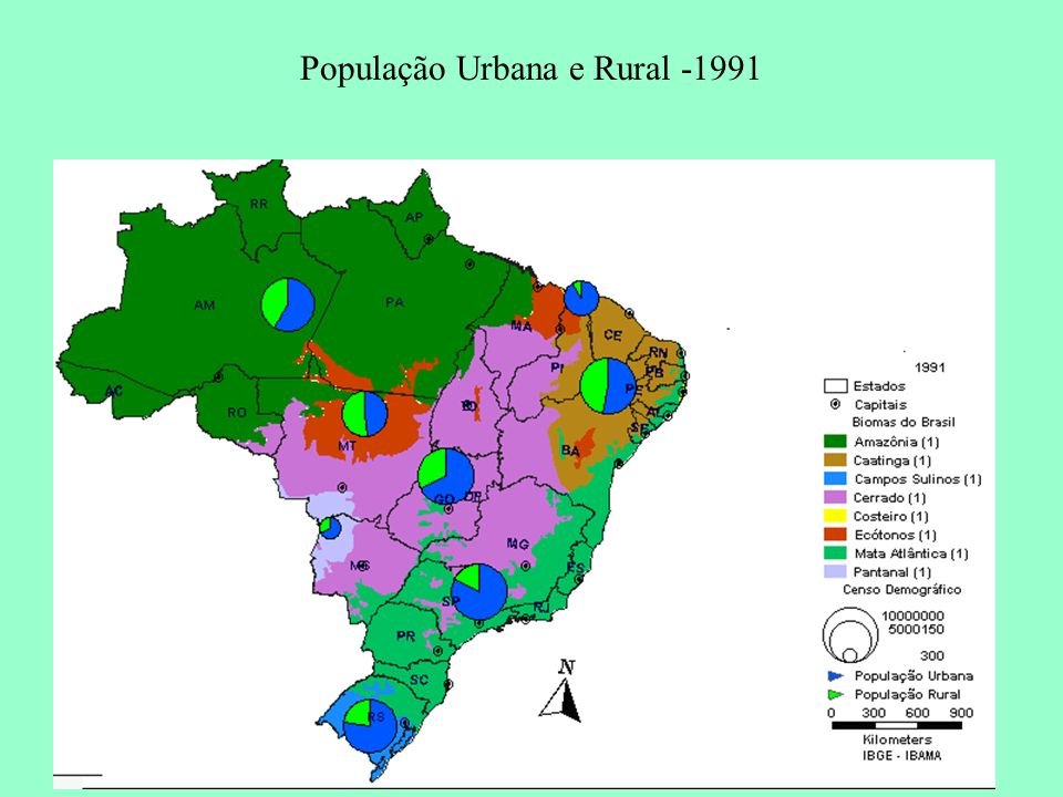 População Urbana e Rural -1991