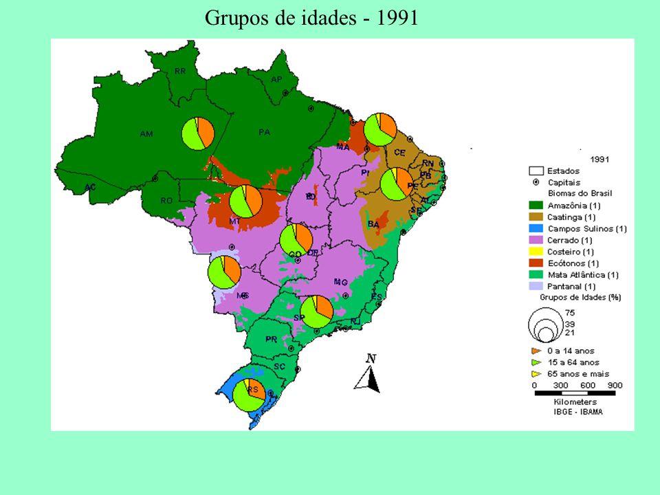 Grupos de idades - 1991