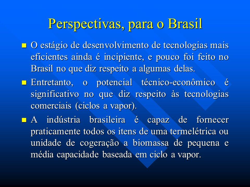Perspectivas, para o Brasil O estágio de desenvolvimento de tecnologias mais eficientes ainda é incipiente, e pouco foi feito no Brasil no que diz res