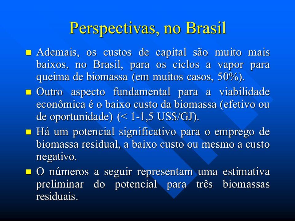 Perspectivas, no Brasil Ademais, os custos de capital são muito mais baixos, no Brasil, para os ciclos a vapor para queima de biomassa (em muitos caso