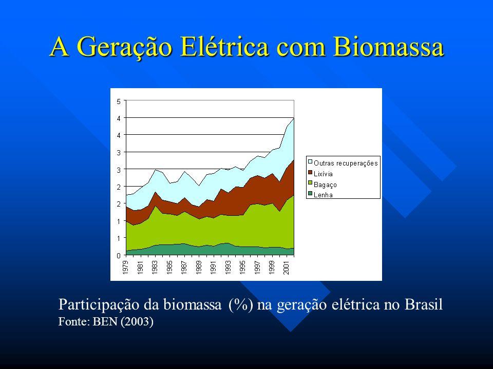 A Geração Elétrica com Biomassa Os números do World Survey of Descentralized Energy 2002-2003 para o Brasil indicam que em 2000 a capacidade de geração distribuída (biomassa inclusive) representava 4% da capacidade total instalada, sendo a geração efetiva equivalente a 3% da geração total (ver figura ao lado).