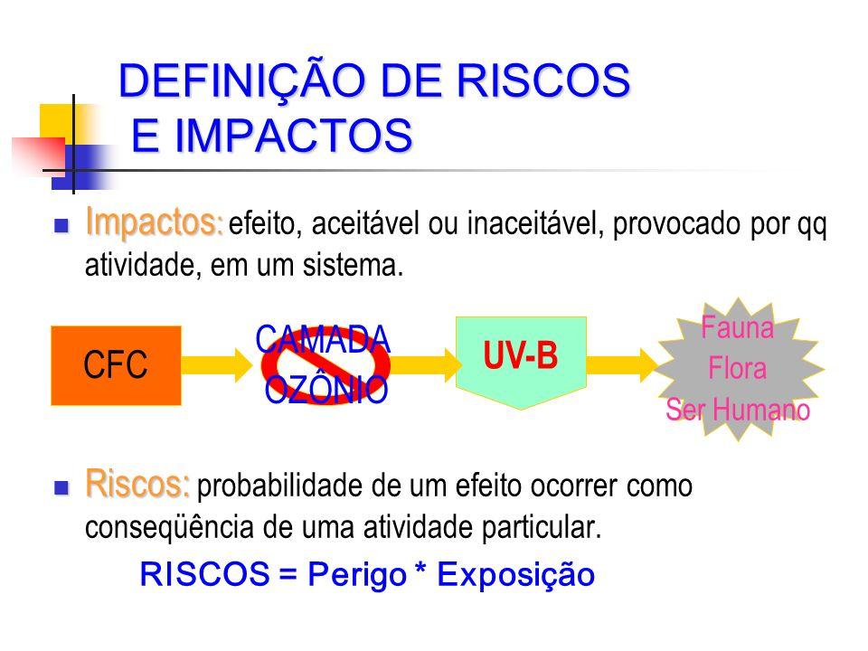 DEFINIÇÃO DE RISCOS E IMPACTOS Impactos : Impactos : efeito, aceitável ou inaceitável, provocado por qq atividade, em um sistema. Riscos: Riscos: prob