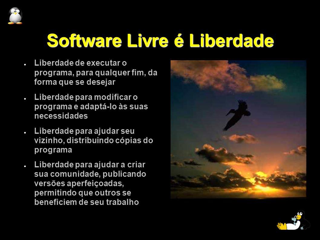 Software Livre é Liberdade Liberdade de executar o programa, para qualquer fim, da forma que se desejar Liberdade para modificar o programa e adaptá-l