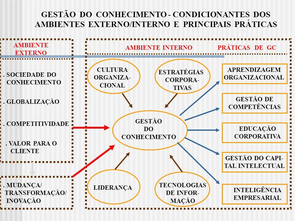 FUNÇÕES DE GC Criar/ Capturar Organizar/ Codificar Disseminar Avaliar Mensurar PROCESSO DE GESTÃO DO CONHECIMENTO (VISÃO SISTÊMICA DE FUNÇÕES X PRÁTICAS ) PRÁTICAS DE GC Aprendizagem Organizacional Inteligência Empresarial Educação Corporativa Gestão de Competências Capital Intelectual Prof.