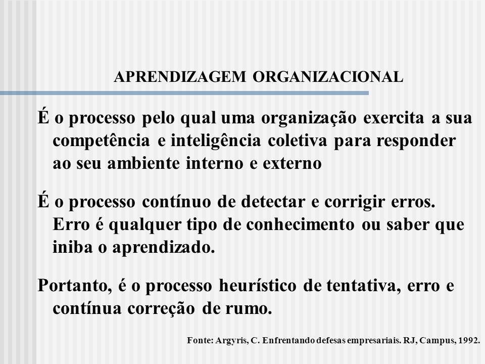 GESTÃO DE COMPETÊNCIAS Entender a Organização como um conjunto de competências institucionais (da empresa) e individuais (de cada colaborador).