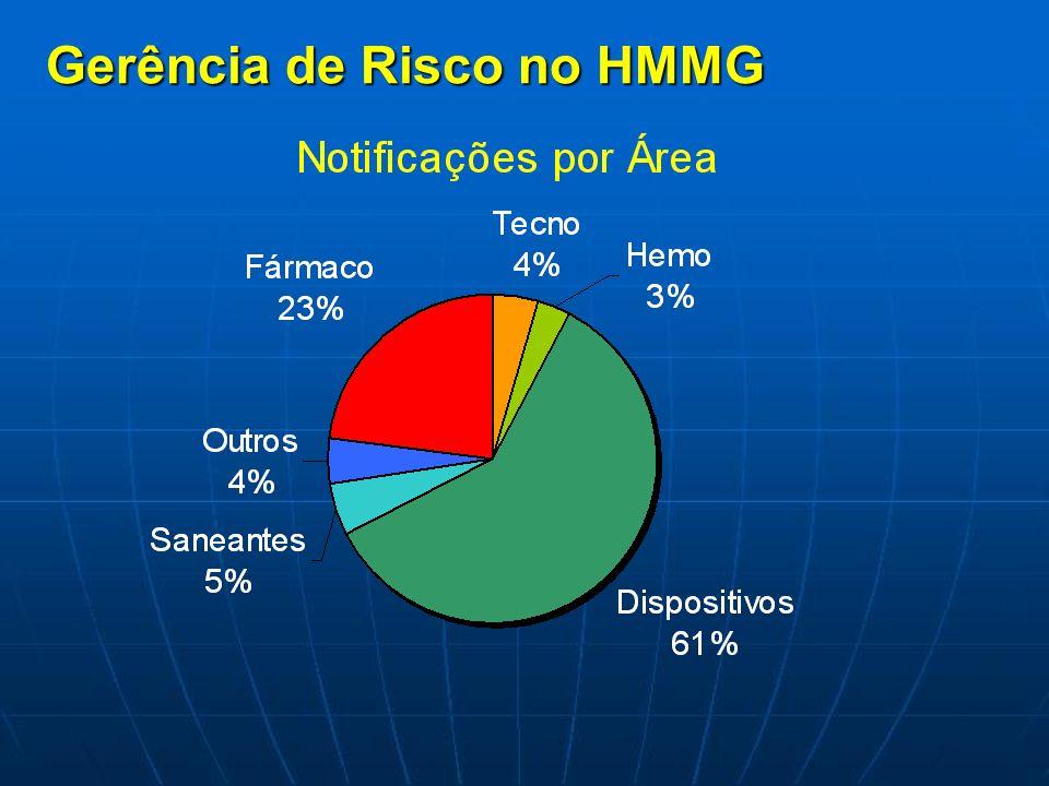 Gerência de Risco no HMMG