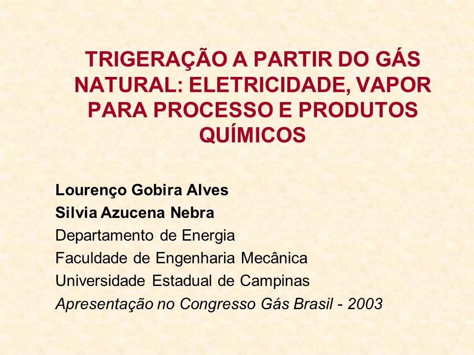 TRIGERAÇÃO A PARTIR DO GÁS NATURAL: ELETRICIDADE, VAPOR PARA PROCESSO E PRODUTOS QUÍMICOS Lourenço Gobira Alves Silvia Azucena Nebra Departamento de E