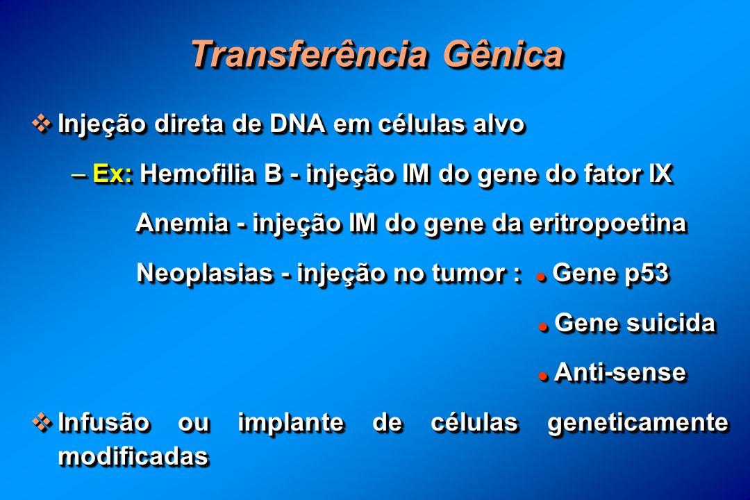 Injeção direta de DNA em células alvo Injeção direta de DNA em células alvo –Ex: Hemofilia B - injeção IM do gene do fator IX Anemia - injeção IM do gene da eritropoetina Anemia - injeção IM do gene da eritropoetina Neoplasias - injeção no tumor : Gene p53 Neoplasias - injeção no tumor : Gene p53 Gene suicida Gene suicida Anti-sense Anti-sense Infusão ou implante de células geneticamente modificadas Infusão ou implante de células geneticamente modificadas Injeção direta de DNA em células alvo Injeção direta de DNA em células alvo –Ex: Hemofilia B - injeção IM do gene do fator IX Anemia - injeção IM do gene da eritropoetina Anemia - injeção IM do gene da eritropoetina Neoplasias - injeção no tumor : Gene p53 Neoplasias - injeção no tumor : Gene p53 Gene suicida Gene suicida Anti-sense Anti-sense Infusão ou implante de células geneticamente modificadas Infusão ou implante de células geneticamente modificadas