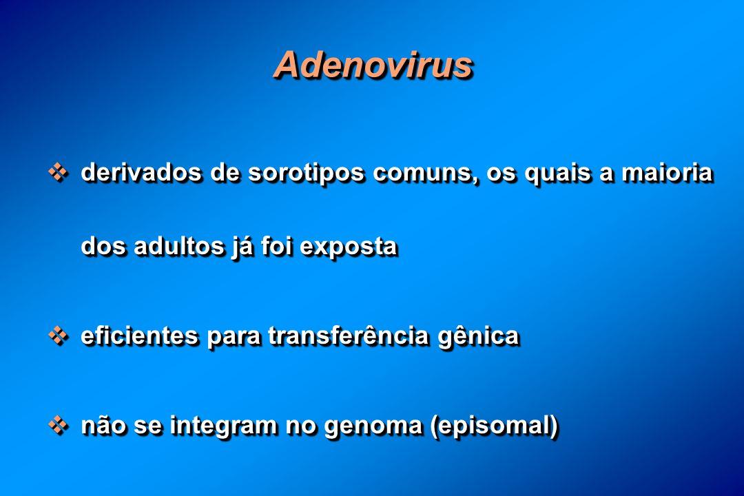 AdenovirusAdenovirus derivados de sorotipos comuns, os quais a maioria dos adultos já foi exposta derivados de sorotipos comuns, os quais a maioria dos adultos já foi exposta eficientes para transferência gênica eficientes para transferência gênica não se integram no genoma (episomal) não se integram no genoma (episomal) derivados de sorotipos comuns, os quais a maioria dos adultos já foi exposta derivados de sorotipos comuns, os quais a maioria dos adultos já foi exposta eficientes para transferência gênica eficientes para transferência gênica não se integram no genoma (episomal) não se integram no genoma (episomal)