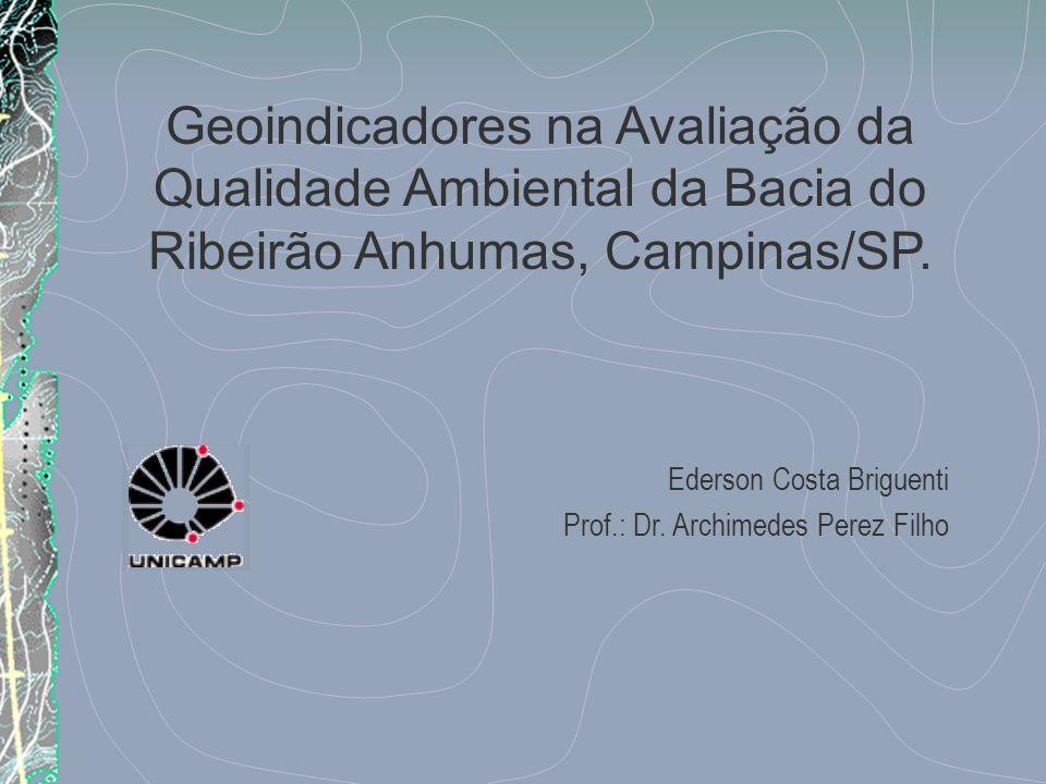 Geoindicadores na Avaliação da Qualidade Ambiental da Bacia do Ribeirão Anhumas, Campinas/SP. Ederson Costa Briguenti Prof.: Dr. Archimedes Perez Filh