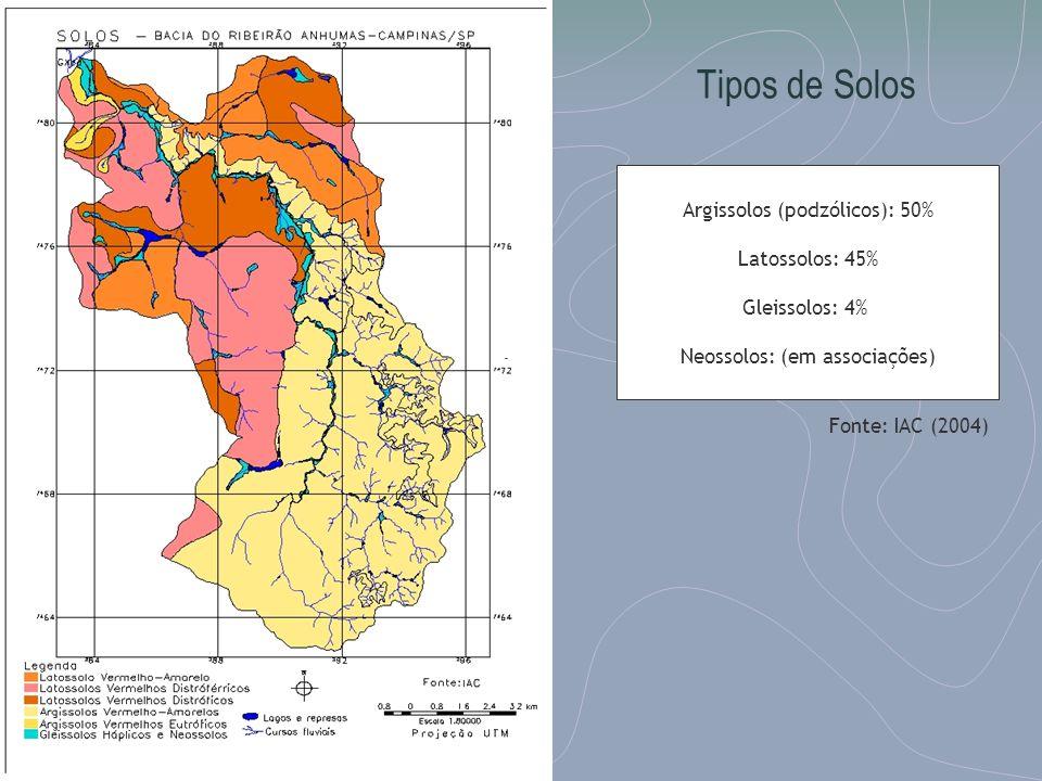 Tipos de Solos Argissolos (podzólicos): 50% Latossolos: 45% Gleissolos: 4% Neossolos: (em associações) Fonte: IAC (2004)