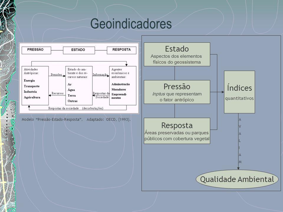 Geoindicadores Estado Aspectos dos elementos físicos do geossistema Pressão Inptus que representam o fator antrópico Resposta Áreas preservadas ou par