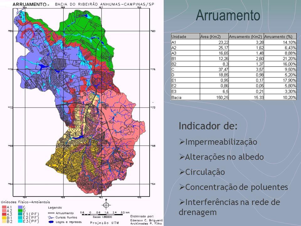 Arruamento Indicador de: Impermeabilização Alterações no albedo Circulação Concentração de poluentes Interferências na rede de drenagem