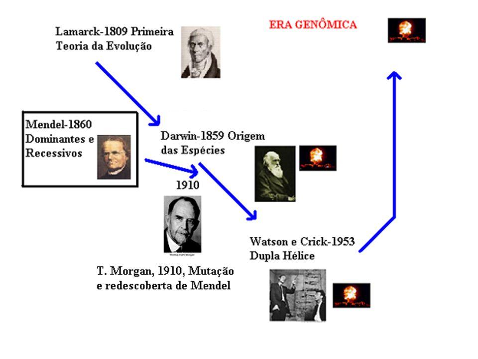 Quando o trabalho de Mendel (Experimentos com Hibridização de Plantas) foi publicado em 1866 in Proceedings of the Natural History Society of Brunn, e