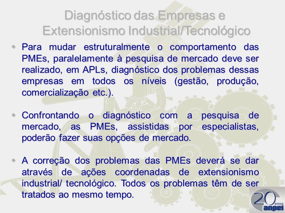 Para mudar estruturalmente o comportamento das PMEs, paralelamente à pesquisa de mercado deve ser realizado, em APLs, diagnóstico dos problemas dessas