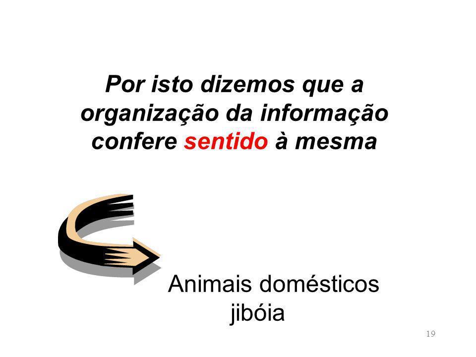 19 Por isto dizemos que a organização da informação confere sentido à mesma Animais domésticos jibóia