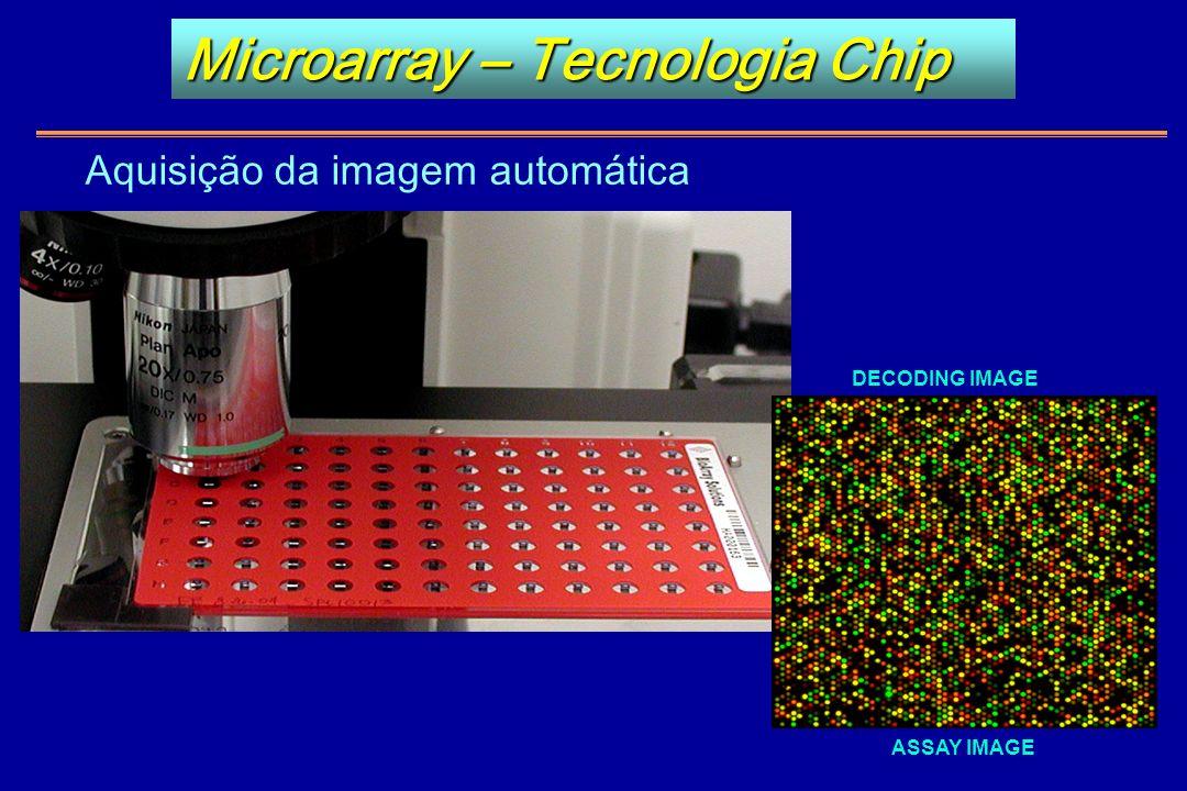 ASSAY IMAGE DECODING IMAGE Microarray – Tecnologia Chip Aquisição da imagem automática