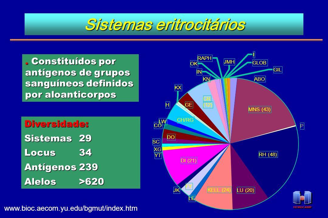 SC CO I GLOB GIL DO YT XG LW GE CH/RG KELL (24) LU (20) OK JMH RAPH ABO IN KN P KX H RH (48) MNS (43) CR (12) DI (21) FY LE JK Diversidade: Sistemas29