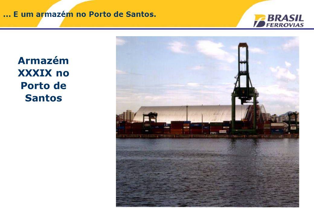 Armazém XXXIX no Porto de Santos... E um armazém no Porto de Santos.