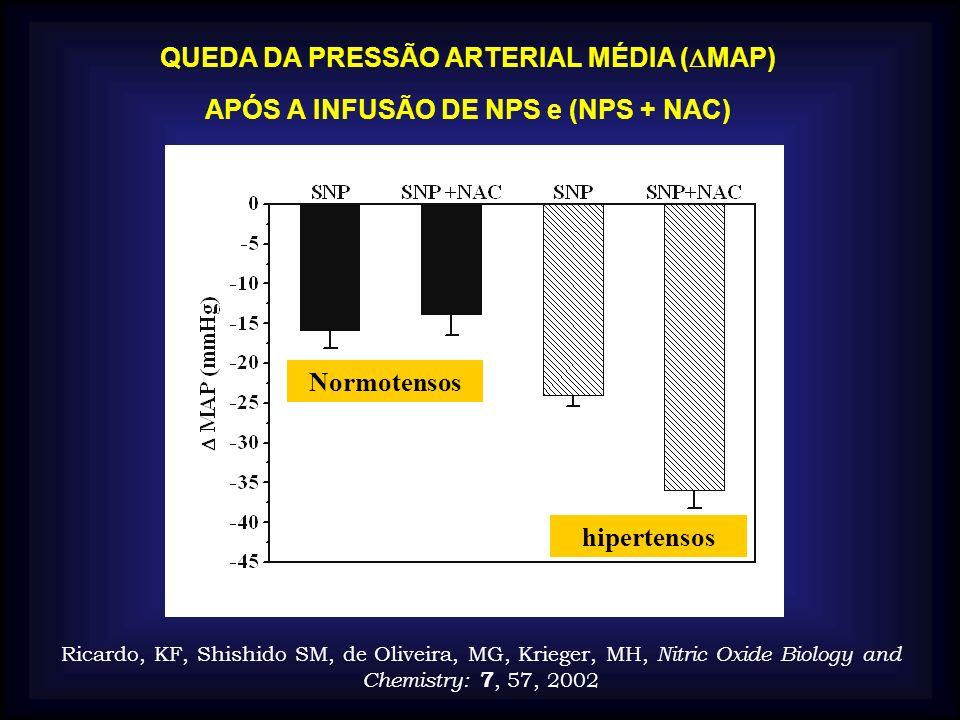 QUEDA DA PRESSÃO ARTERIAL MÉDIA ( MAP) APÓS A INFUSÃO DE NPS e (NPS + NAC) Normotensos hipertensos Ricardo, KF, Shishido SM, de Oliveira, MG, Krieger,
