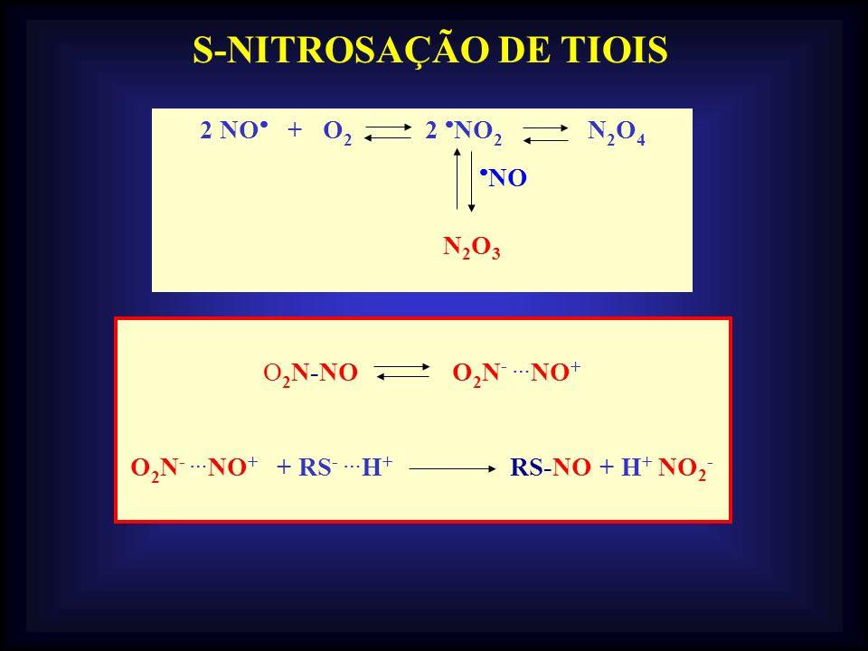 2 NO + O 2 2 NO 2 N 2 O 4 NO N2O3 N2O3 O 2 N-NO O 2 N - NO + O 2 N - NO + + RS - H + RS-NO + H + NO 2 - S-NITROSAÇÃO DE TIOIS
