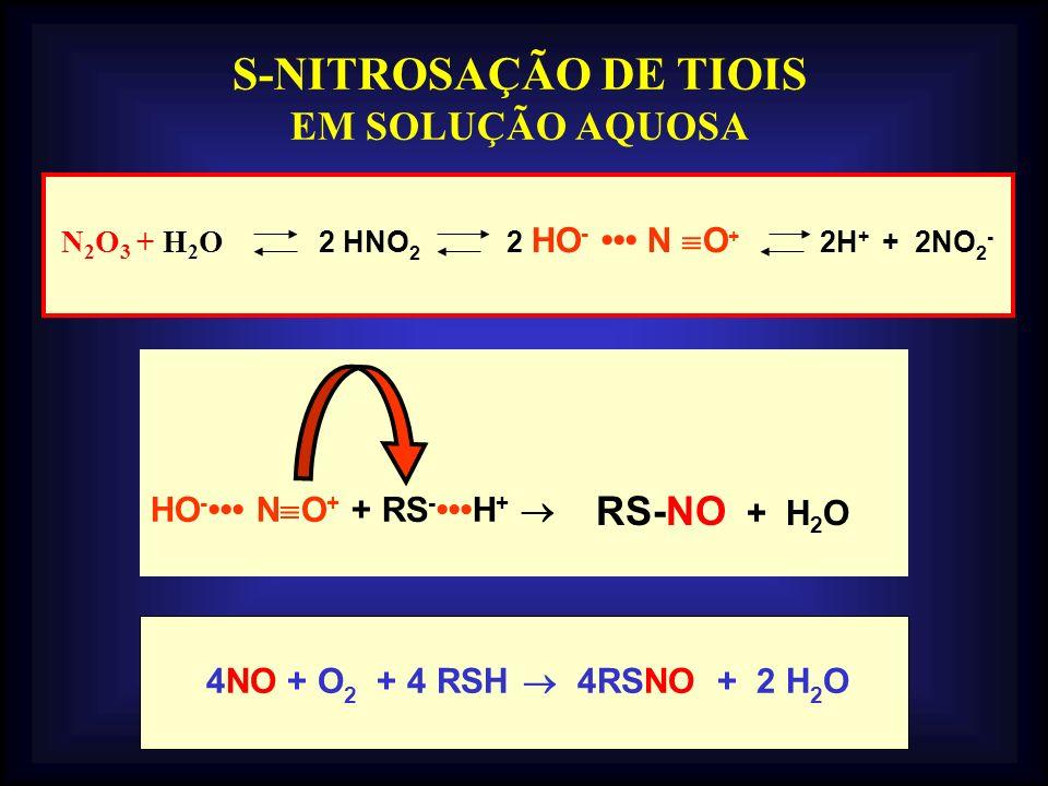 HO - N O + + RS -H + S-NITROSAÇÃO DE TIOIS EM SOLUÇÃO AQUOSA 4NO + O 2 + 4 RSH 4RSNO + 2 H 2 O N 2 O 3 + H 2 O 2 HNO 2 2 HO - N O + 2H + + 2NO 2 - RS-