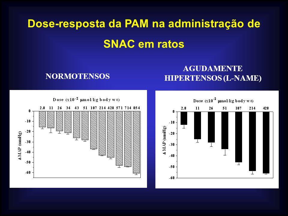 Dose-resposta da PAM na administração de SNAC em ratos NORMOTENSOS AGUDAMENTE HIPERTENSOS (L-NAME)