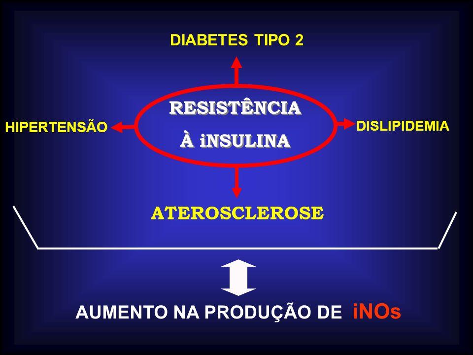 ATEROSCLEROSE RESISTÊNCIA À iNSULINA RESISTÊNCIA À iNSULINA DIABETES TIPO 2 DISLIPIDEMIA HIPERTENSÃO AUMENTO NA PRODUÇÃO DE iNOs