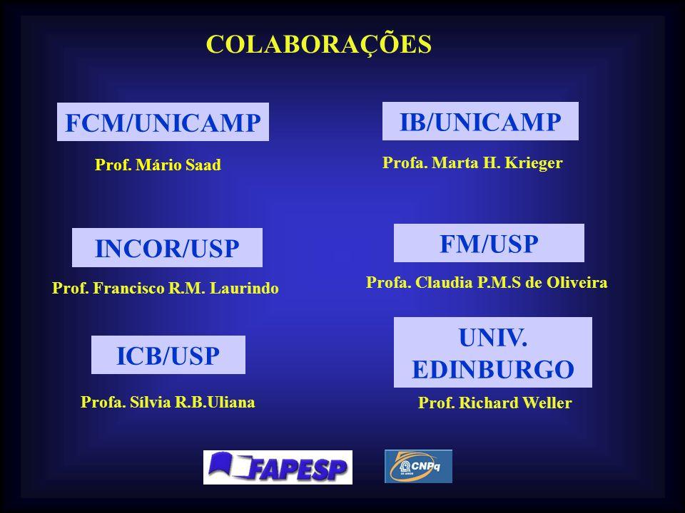 COLABORAÇÕES FCM/UNICAMP IB/UNICAMP Prof. Mário Saad Profa. Marta H. Krieger Prof. Francisco R.M. Laurindo INCOR/USP ICB/USP Profa. Sílvia R.B.Uliana