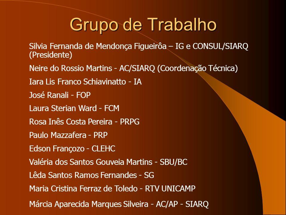 Grupo de Trabalho Silvia Fernanda de Mendonça Figueirôa – IG e CONSUL/SIARQ (Presidente) Neire do Rossio Martins - AC/SIARQ (Coordenação Técnica) Iara