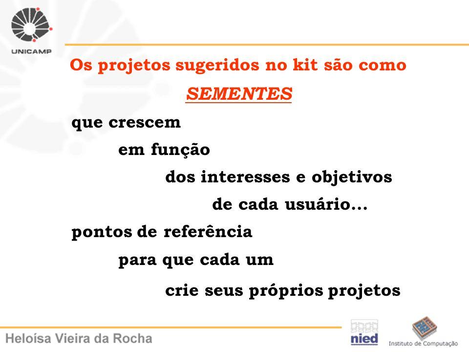 Os projetos sugeridos no kit são como SEMENTES que crescem em função dos interesses e objetivos de cada usuário... pontos de referência para que cada