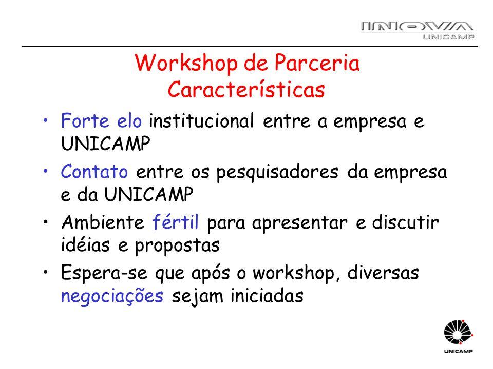 Workshop de Parceria Características Forte elo institucional entre a empresa e UNICAMP Contato entre os pesquisadores da empresa e da UNICAMP Ambiente
