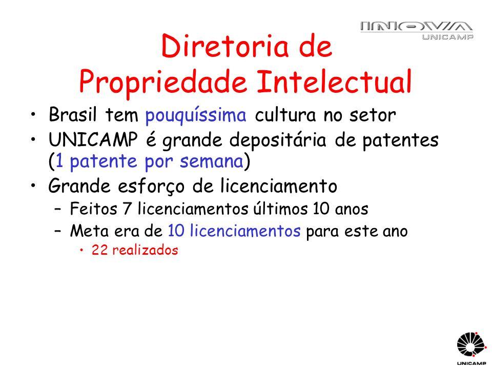 Diretoria de Propriedade Intelectual Brasil tem pouquíssima cultura no setor UNICAMP é grande depositária de patentes (1 patente por semana) Grande es