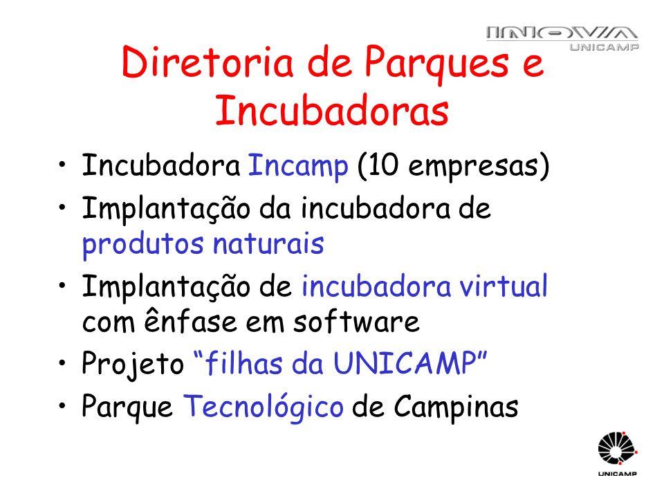 Diretoria de Parques e Incubadoras Incubadora Incamp (10 empresas) Implantação da incubadora de produtos naturais Implantação de incubadora virtual co