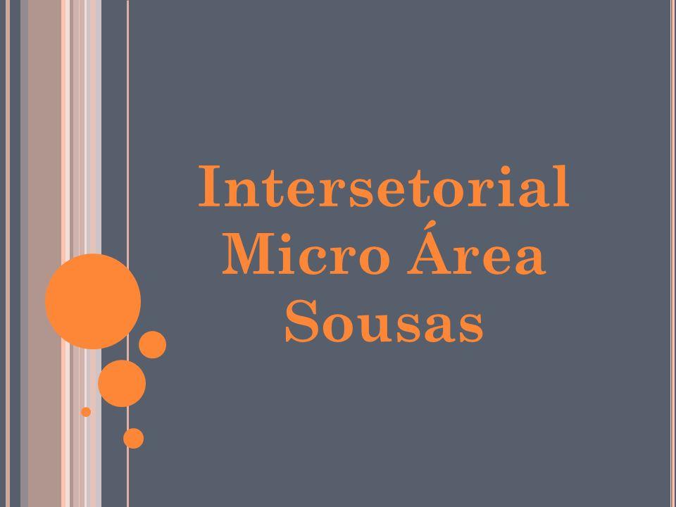 Intersetorial Micro Área Sousas