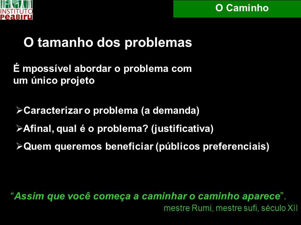Caracterizar o problema (a demanda) Afinal, qual é o problema? (justificativa) Quem queremos beneficiar (públicos preferenciais) O Caminho O tamanho d