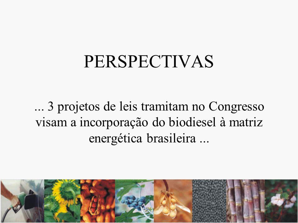 PERSPECTIVAS... 3 projetos de leis tramitam no Congresso visam a incorporação do biodiesel à matriz energética brasileira...
