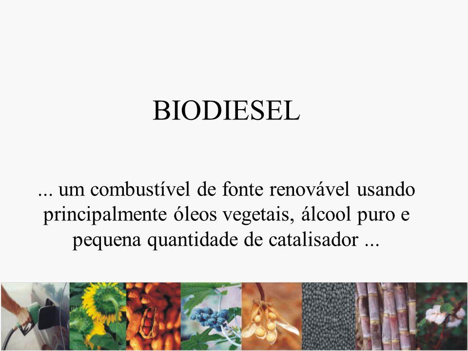 Transesterificação Fontes: gordura animal, óleos residuais de fritura e óleos vegetais (soja, girassol, amendoim, algodão, palma/dendê, colza/canola, coco, macaúba, mamona, abacate, pequi, babaçu, etc.) Álcool: etanol (cana-de açúcar) e metanol Catálise: alcalina, ácida ou enzimática Óleo Vegetal + Álcool Biodiesel + Glicerina (1 ton) (0,15 ton) (1,05 ton) (0,1 ton) catalisador