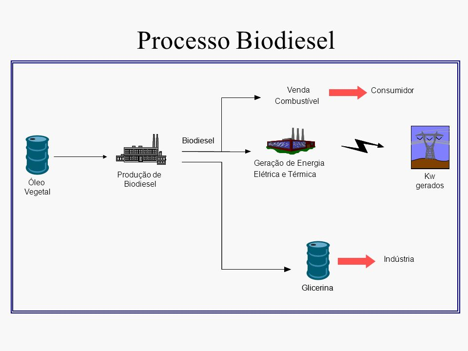 Processo Biodiesel