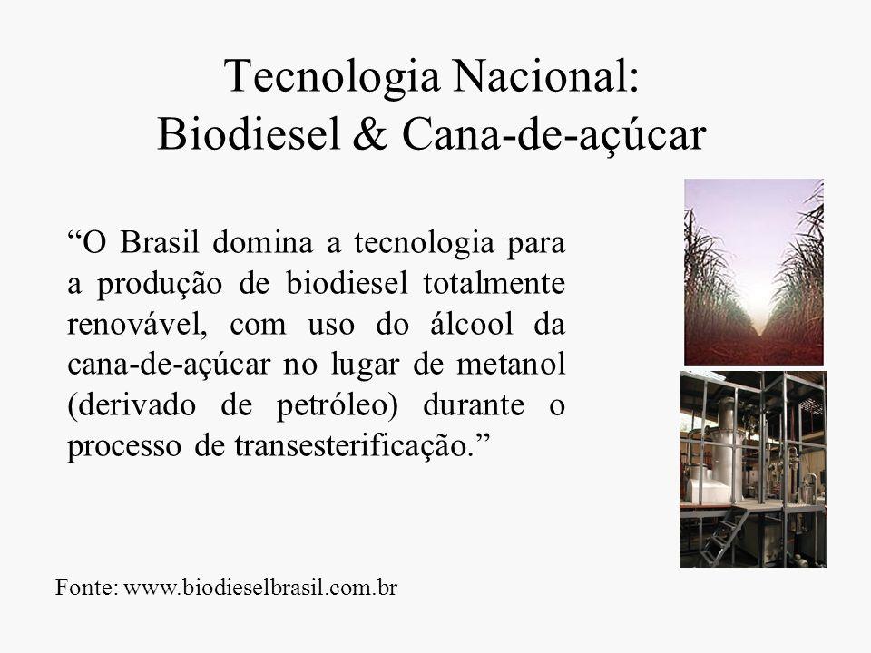 Tecnologia Nacional: Biodiesel & Cana-de-açúcar O Brasil domina a tecnologia para a produção de biodiesel totalmente renovável, com uso do álcool da c