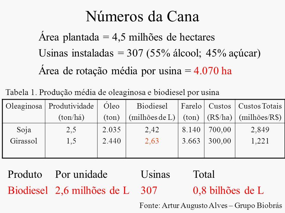 Números da Cana Área plantada = 4,5 milhões de hectares Usinas instaladas = 307 (55% álcool; 45% açúcar) Área de rotação média por usina = 4.070 ha Ol