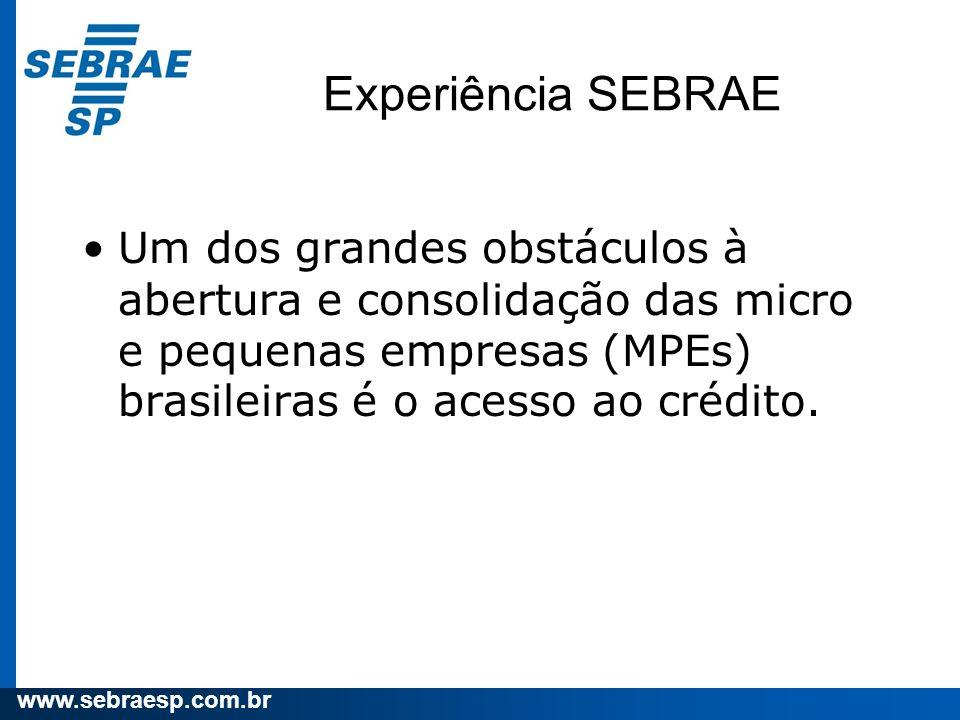 www.sebraesp.com.br Experiência SEBRAE Um dos grandes obstáculos à abertura e consolidação das micro e pequenas empresas (MPEs) brasileiras é o acesso