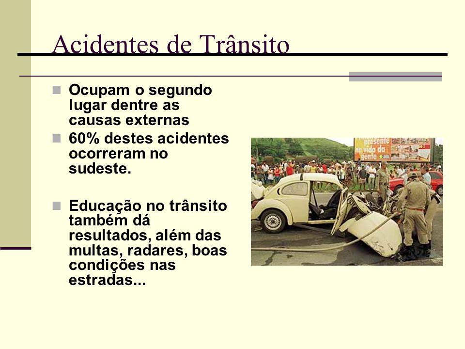 Acidentes de Trânsito Ocupam o segundo lugar dentre as causas externas 60% destes acidentes ocorreram no sudeste. Educação no trânsito também dá resul