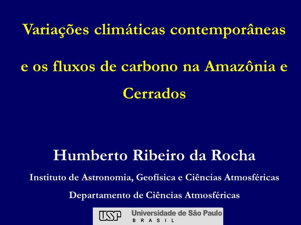Fluxo CO 2 ( mol CO 2 /m 2 /s) Fluxos em cana-de-açúcar (Sertãozinho, SP) Rocha (1998) - resolução do ciclo diurno Pós-colheita 30 cm 2 m 4 m (MAI) (JUL) (OUT) (JAN) + PERDAS - GANHOS