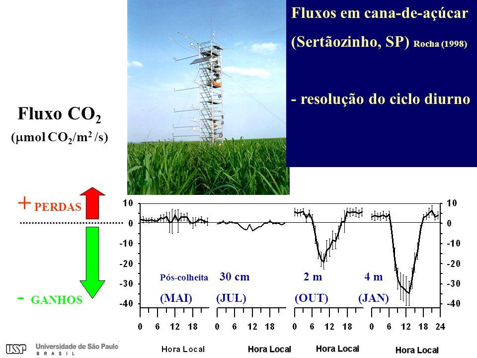 Fluxo CO 2 ( mol CO 2 /m 2 /s) Fluxos em cana-de-açúcar (Sertãozinho, SP) Rocha (1998) - resolução do ciclo diurno Pós-colheita 30 cm 2 m 4 m (MAI) (J