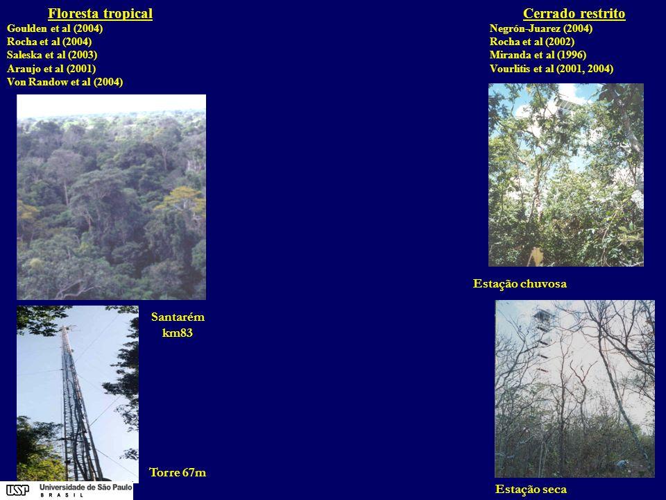 Estação chuvosa Cerrado restrito Negrón-Juarez (2004) Rocha et al (2002) Miranda et al (1996) Vourlitis et al (2001, 2004) Floresta tropical Goulden e